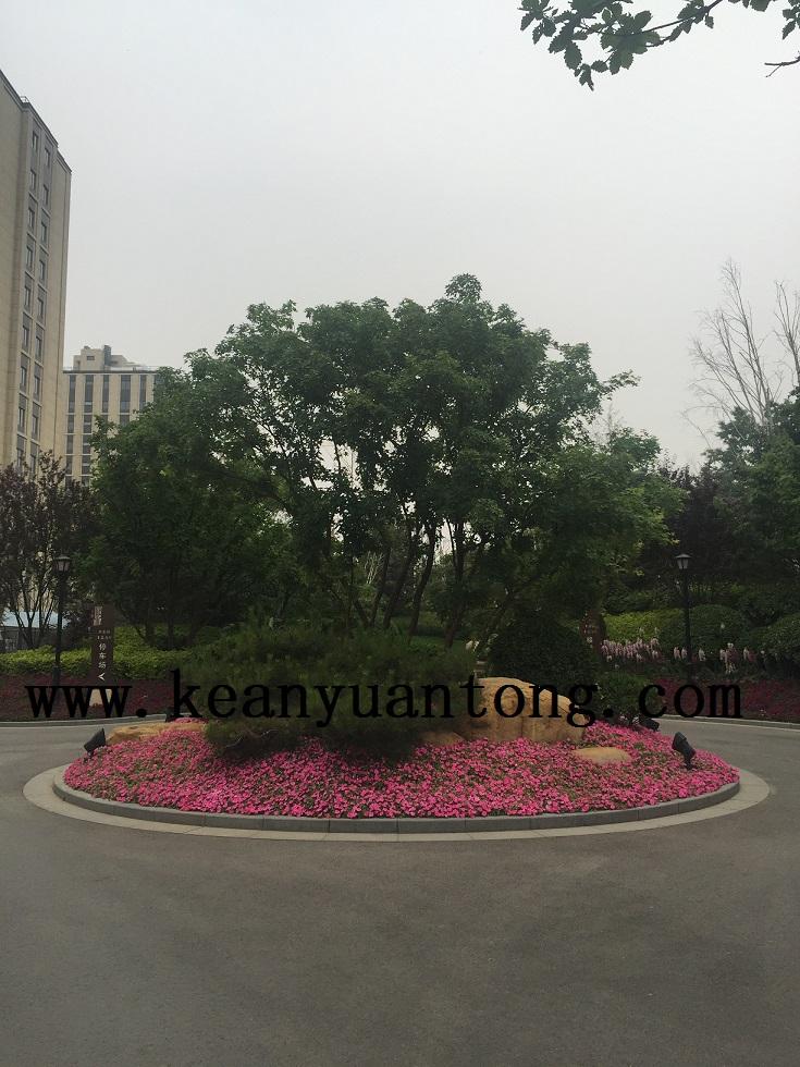 北京平安小区无线监控案例